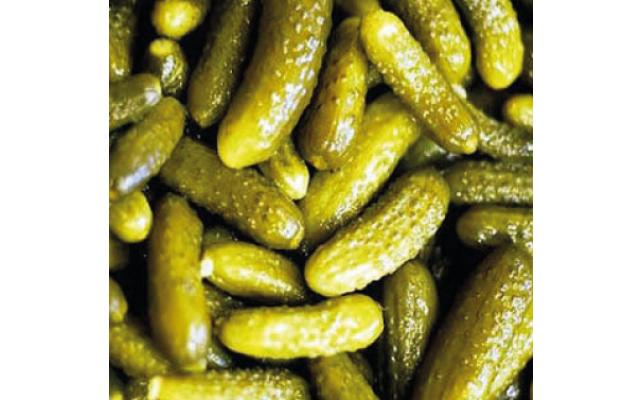 Salatalık Pet Kavanoz 5Lt